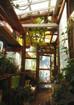 ガーデンハウスの壁