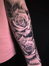 Roses of _jonkocur thank you so much to