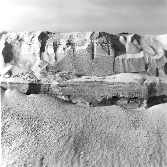 Dune, Southampton, NY, Chromogenic Print, Series of 20