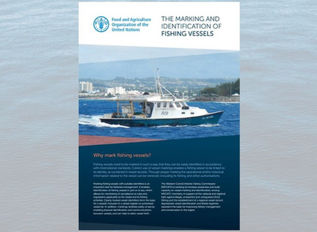 New briefing: The Marking and Identification of Fishing Vessels