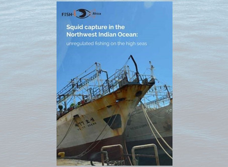 New FISH-i Africa report: Squid capture in the Northwest Indian Ocean - unregulated fishing on the h