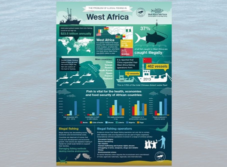 The Problem of Illegal Fishing in West Africa - PDF