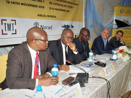 West Africa Task Force Meeting 7 launches Phase 2 of Norad support