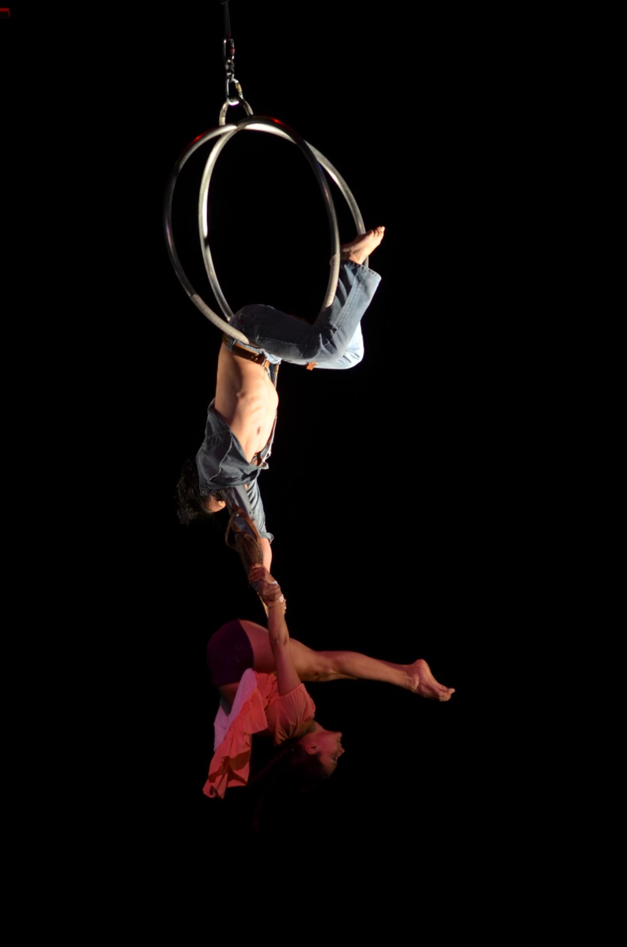 Pieza Dragonfly (2015)