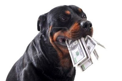 Rottie with money in mouth.jpg