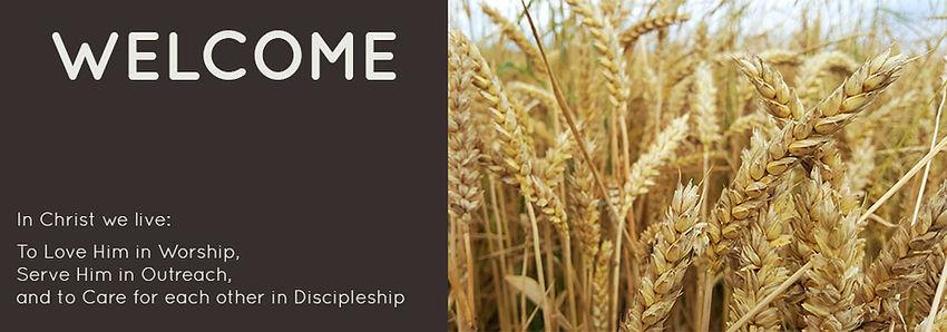 banner_harvest.jpg
