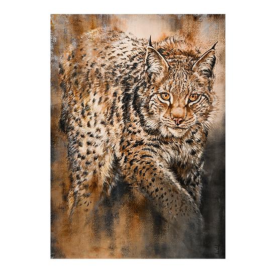 Bâche Lynx
