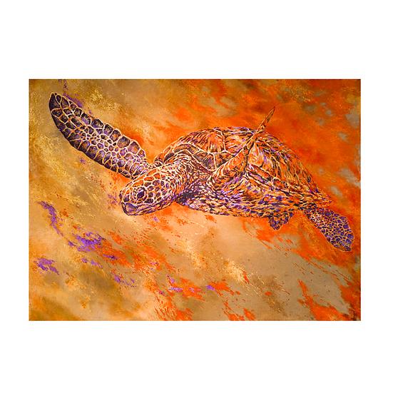 Bâche Purple Turtle