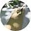 Thumbnail: Bestecktaschen