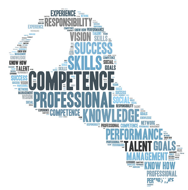 Word cloud depicting the primary elements of Competence