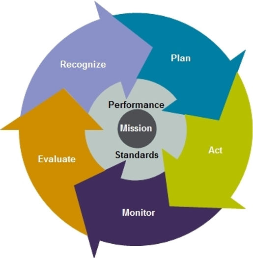 Image depicting the standards included in Performance Management