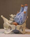 périnatal postnatal ixelles