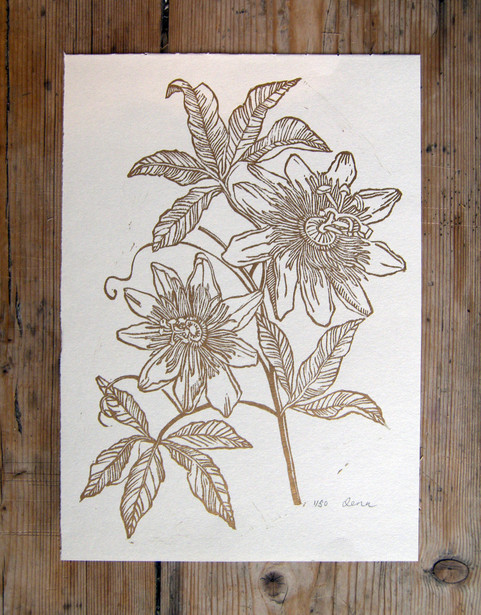 'Passion Flower'