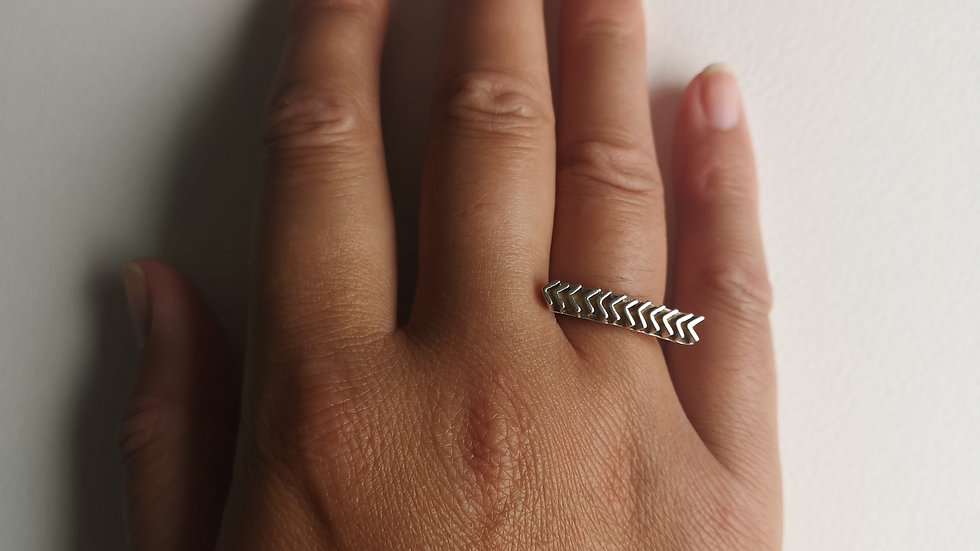 Chasing Arrows, Chasing Dreams, Long Curved Ring