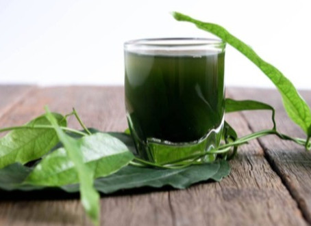 Can Chlorophyll Cure My Acne?
