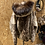 Thumbnail: Sælskindsjakke med pels