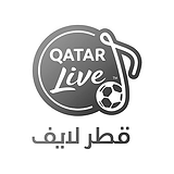 qatar3.png