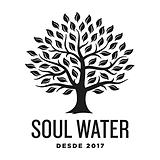 soul water marketing