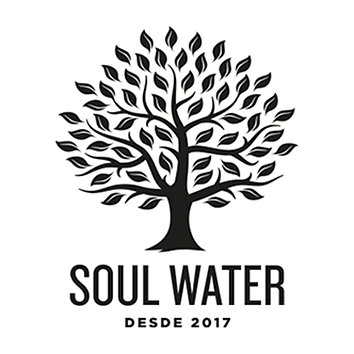 soul water marketing