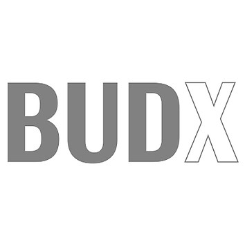 budx marketing