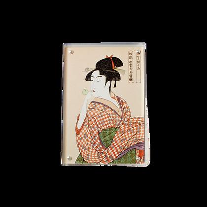 Carte postale sous plexiglas aimanté