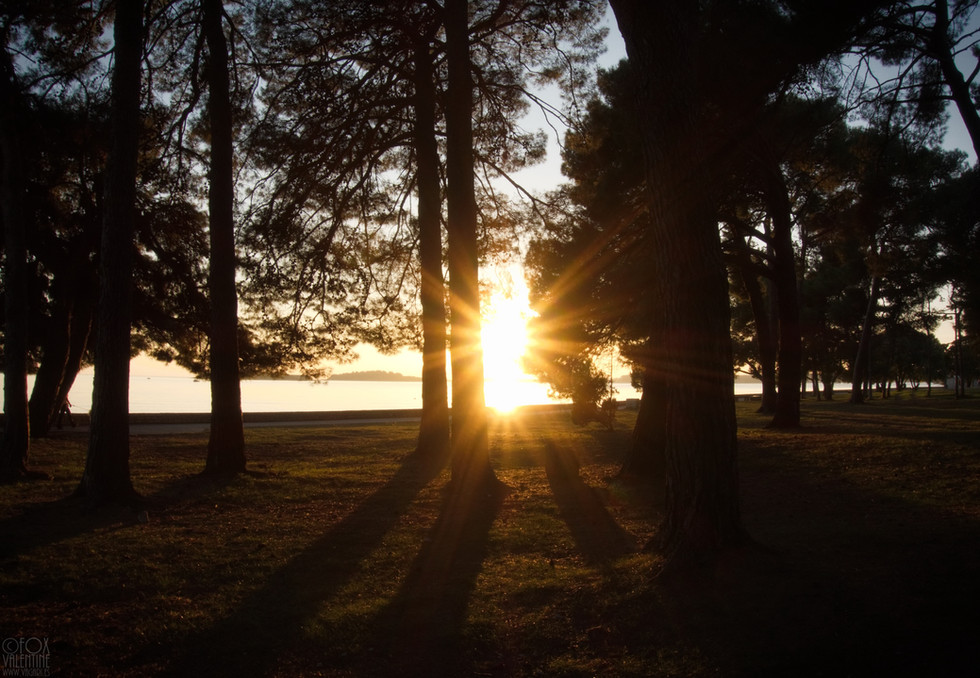 Fazana Sun