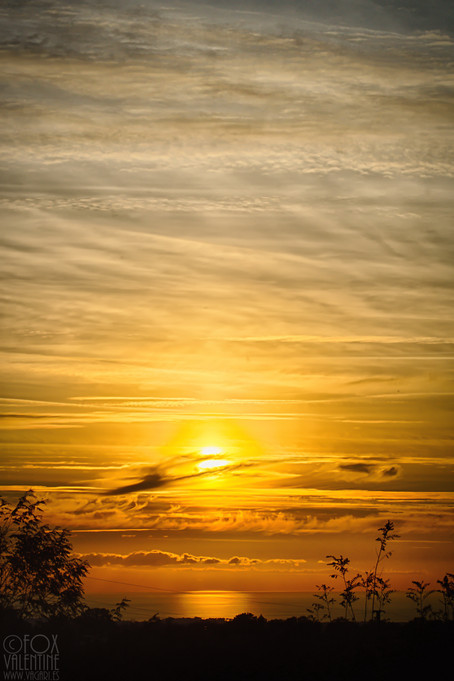 Porec sunset
