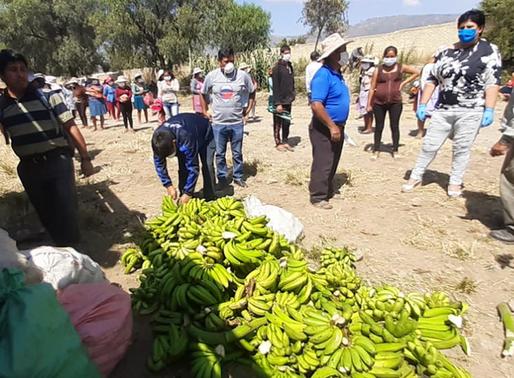 Resurge el trueque de alimentos y evita el desabastecimiento en las comunidades agrícolas