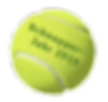 Schnupperjahr Ball transparent 228x215.p
