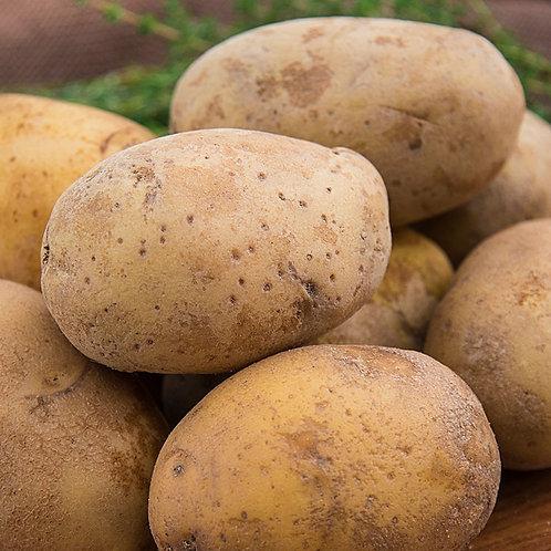 Potatoes, TX, 1lb bag