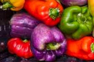 Bell Peppers, Mixed, 1lb, TX