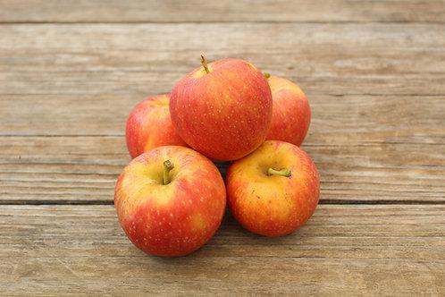 Manzanas, Gala, 2lb