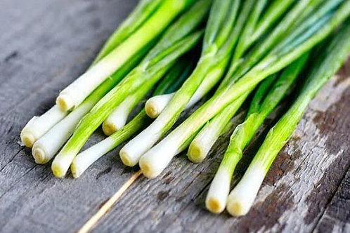 Green Onions, Bunch