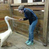 Linda and pelican.jpg