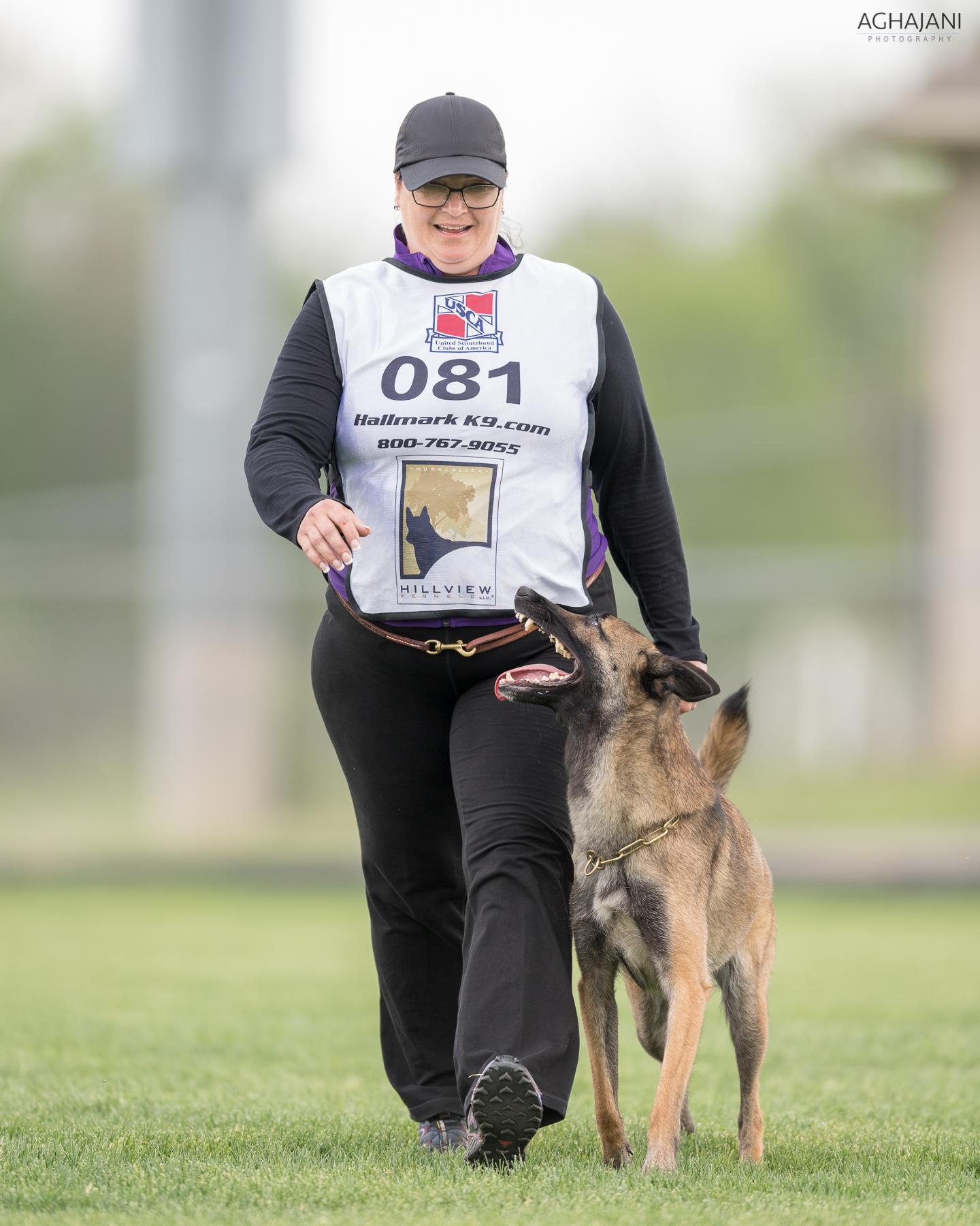 2018 Working Dog Championship