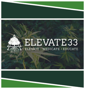 Elevate 33 Final Logo-01.jpg