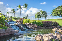 hawaii-1034890_1920.jpg