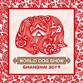 logo-wds2019.png