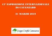 2019 Int Catanzaro locandina.jpg