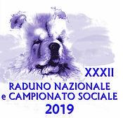 Raduno ANICC 2019.jpg
