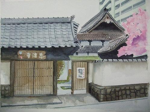Japan/MH watercolor(百業名家登錄3 year)