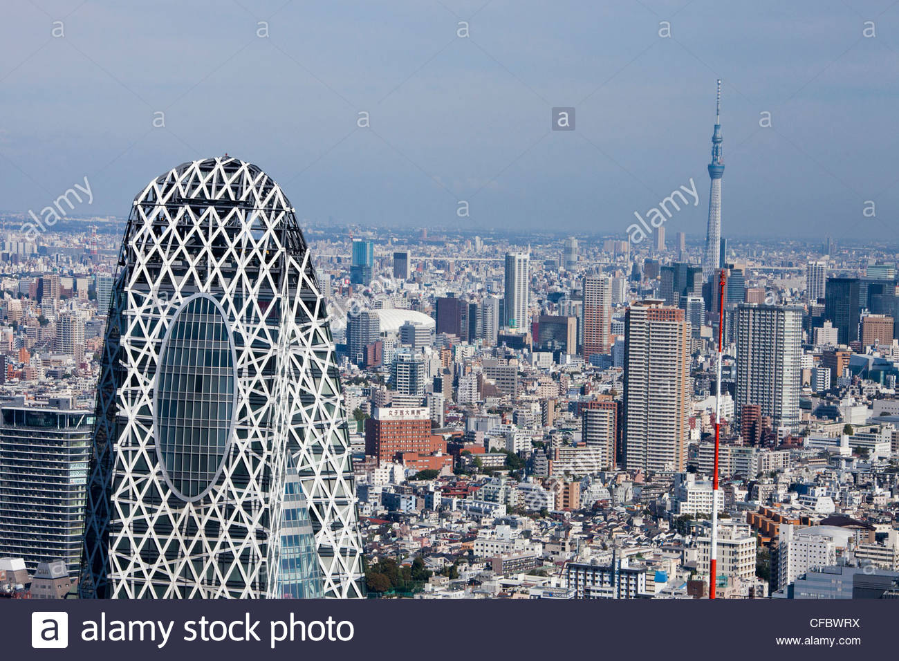 japan-asia-tokyo-city-shinjuku-district-cocoon-building-sky-tree-tower-CFBWRX