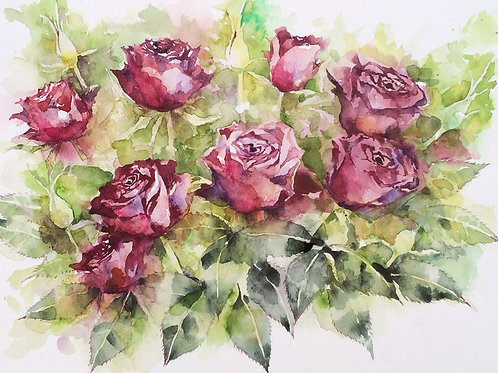 Japan NKsr watercolor