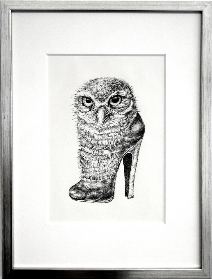 Owl in Shoe.