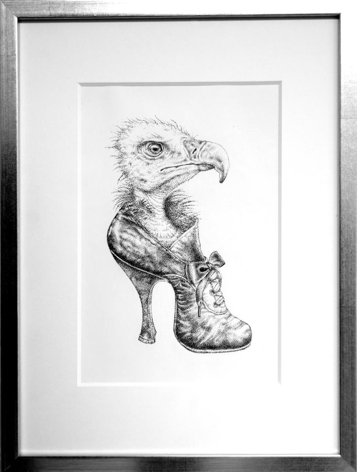 Vulture in shoe.