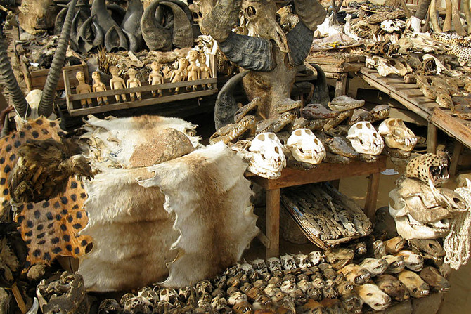 Truth about voodoo | Hoodoo healing by Kadu  +27788368653: UNITED KINGDOM