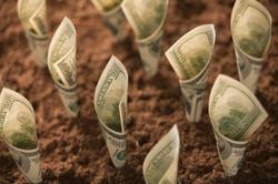 160209-moneygrowth-stock