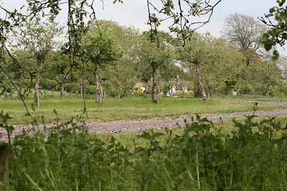 caravan park.JPG