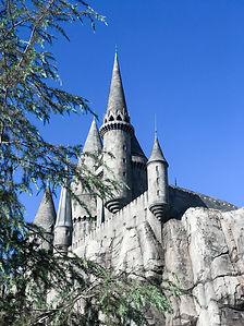 Harry Potter World_-14.jpg
