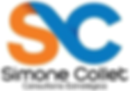 SC Consult Logo.png